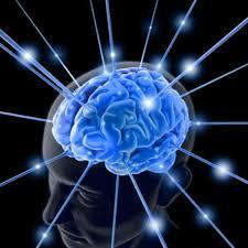 Reprogramacao Cerebral